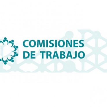 Comisiones de Trabajo Cluster