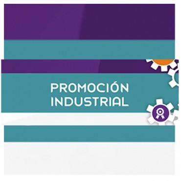 ¿Qué nos dejó el Taller de Promoción Industrial?